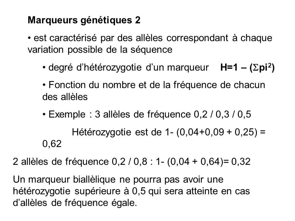 Marqueurs génétiques 2 est caractérisé par des allèles correspondant à chaque variation possible de la séquence.