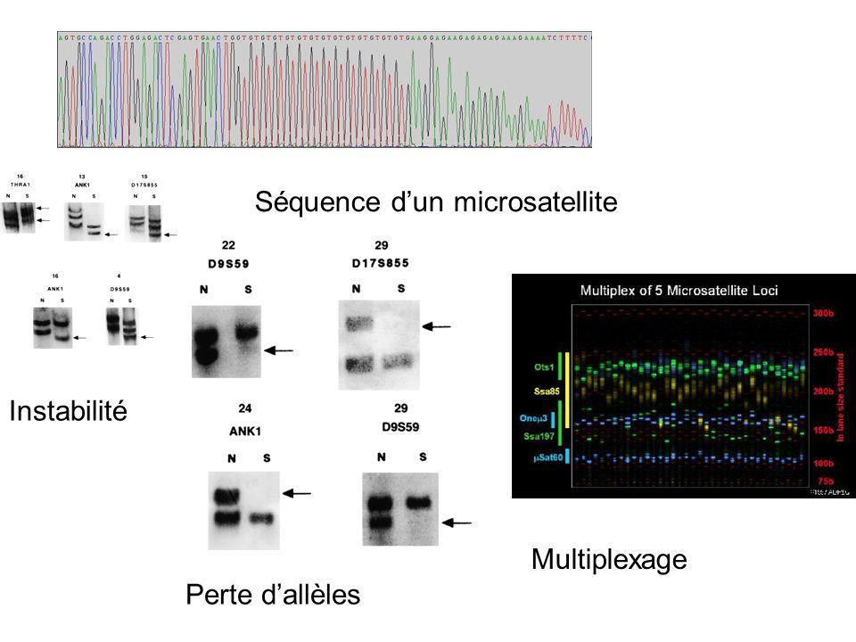 Séquence d'un microsatellite
