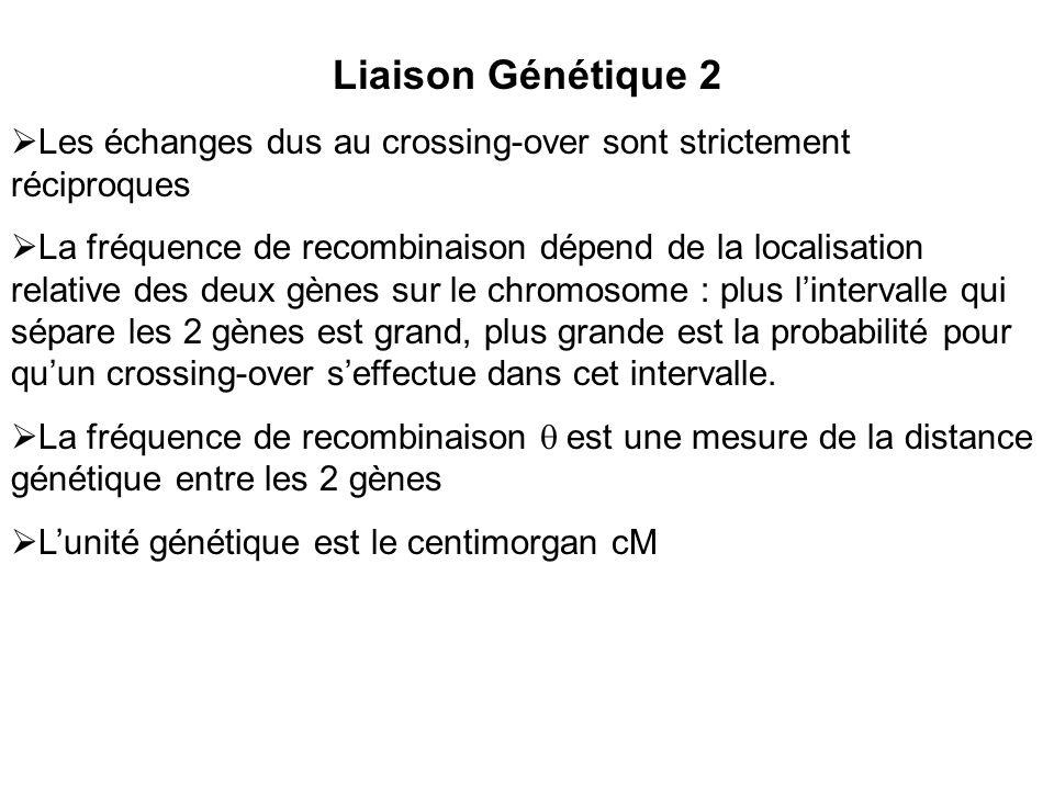 Liaison Génétique 2 Les échanges dus au crossing-over sont strictement réciproques.