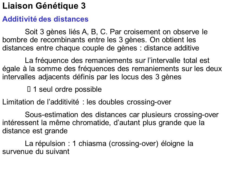 Liaison Génétique 3 Additivité des distances