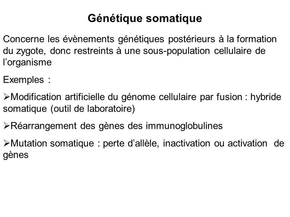 Génétique somatique