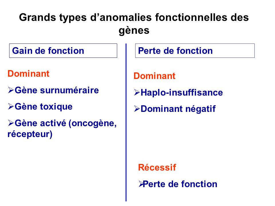 Grands types d'anomalies fonctionnelles des gènes