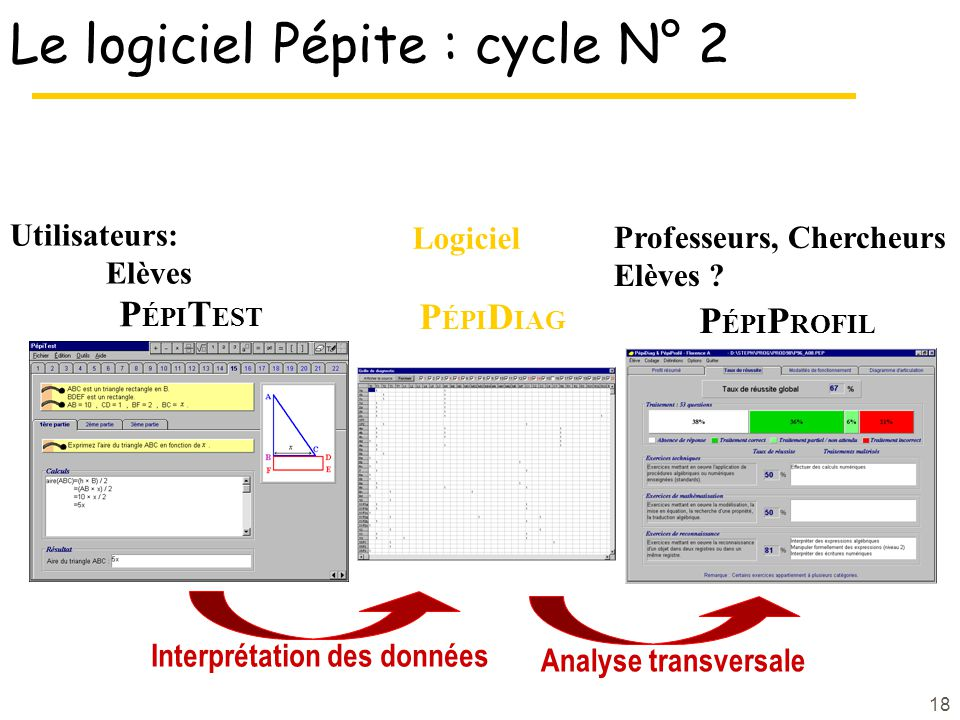 Le logiciel Pépite : cycle N° 2