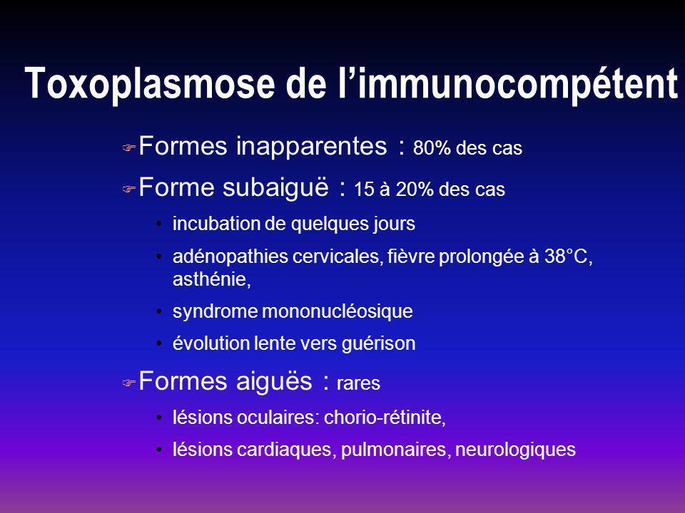 Toxoplasmose de l'immunocompétent