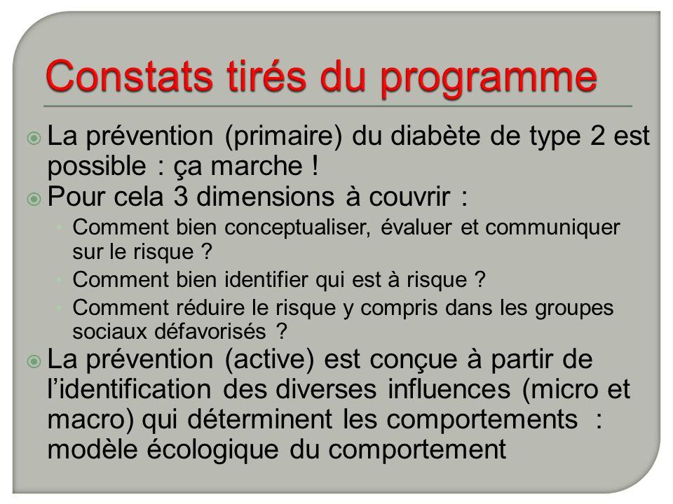Constats tirés du programme