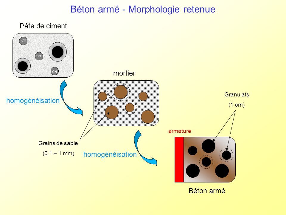Béton armé - Morphologie retenue