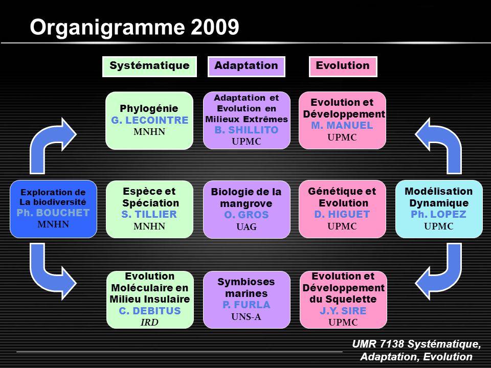 Organigramme 2009 Systématique Adaptation Evolution Phylogénie