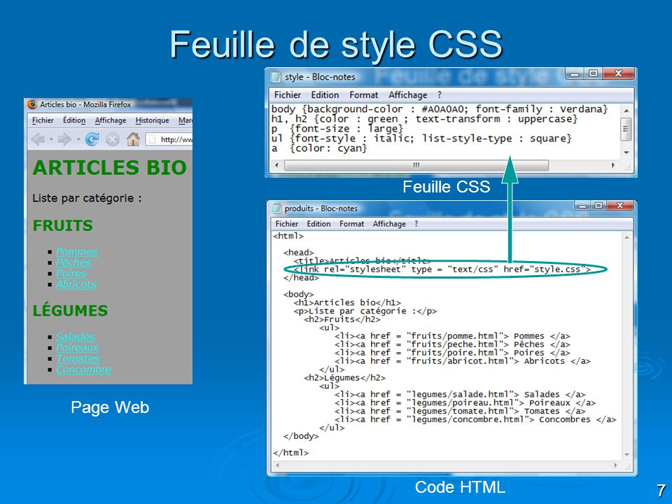 Feuille de style CSS Feuille CSS Page Web Code HTML