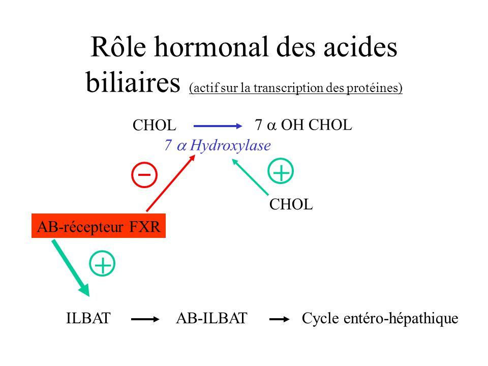Rôle hormonal des acides biliaires (actif sur la transcription des protéines)