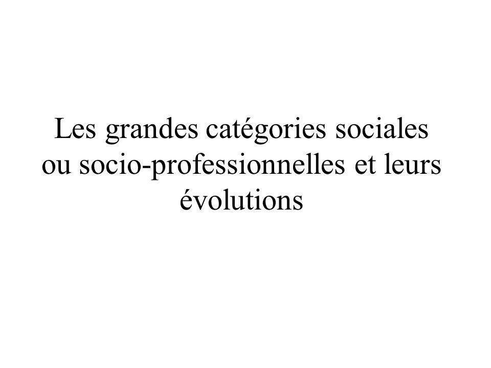 Morphologie sociale Les grandes catégories sociales ou socio-professionnelles et leurs évolutions