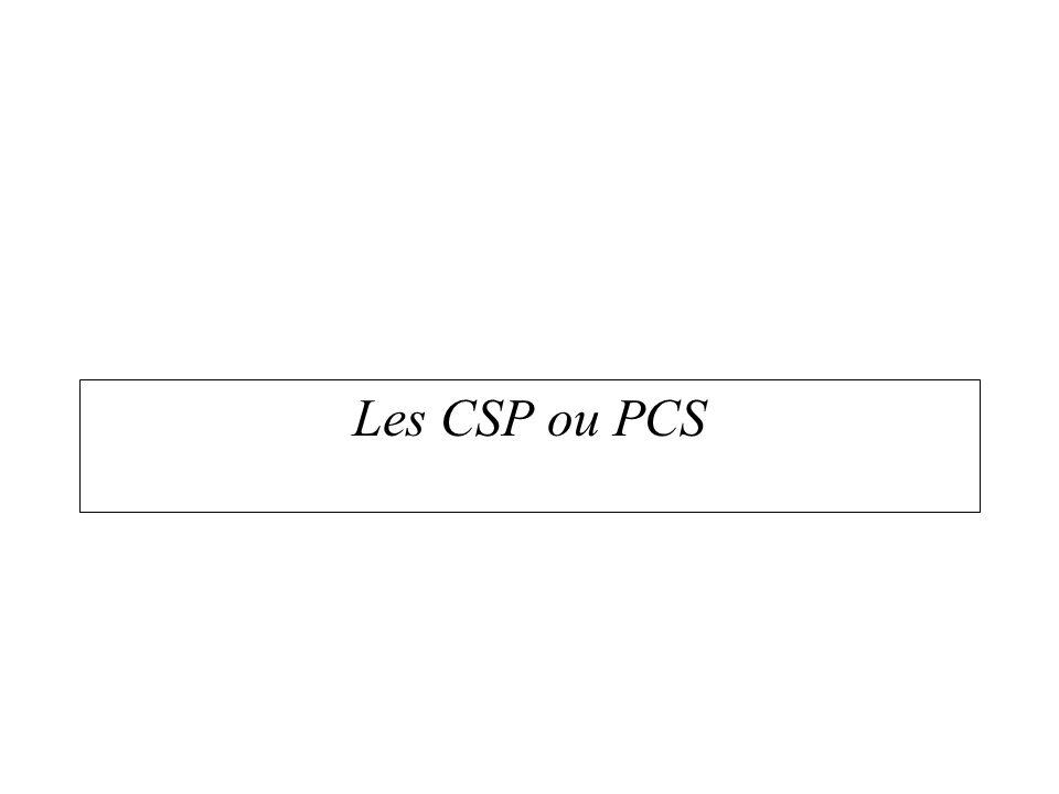 Morphologie sociale Les CSP ou PCS