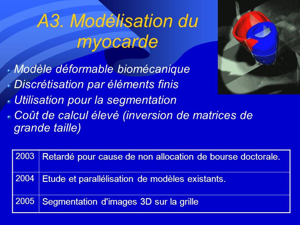 A3. Modélisation du myocarde