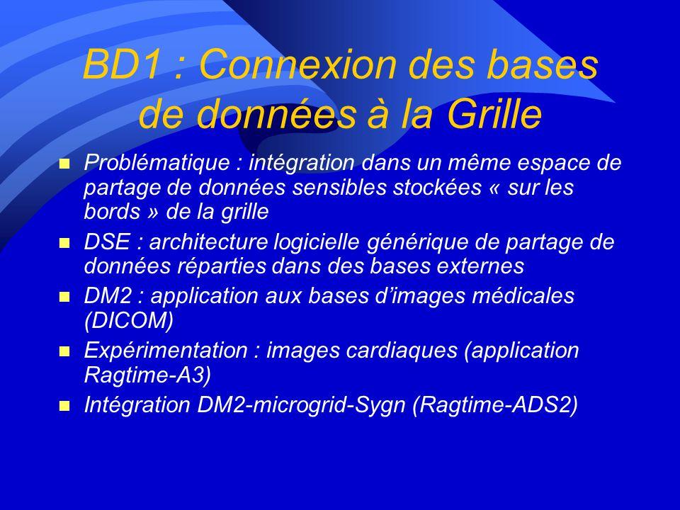 BD1 : Connexion des bases de données à la Grille