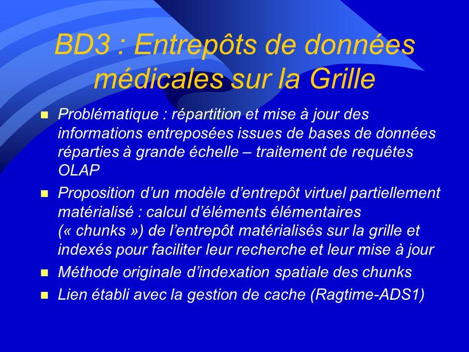 BD3 : Entrepôts de données médicales sur la Grille