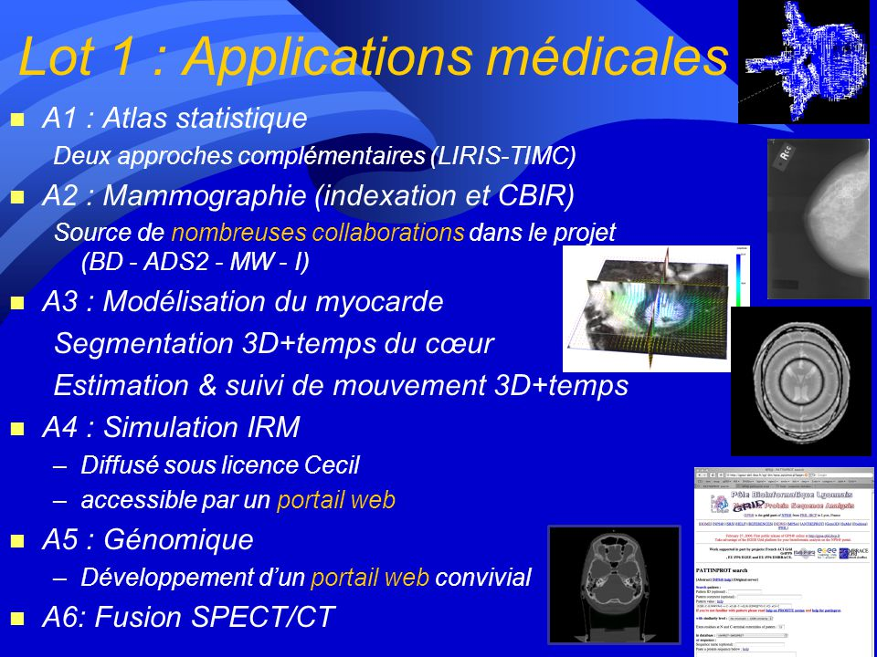 Lot 1 : Applications médicales