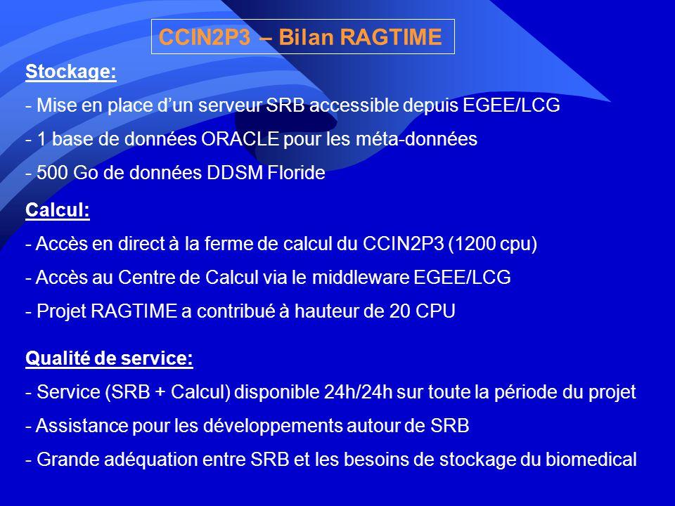 CCIN2P3 – Bilan RAGTIME Stockage: