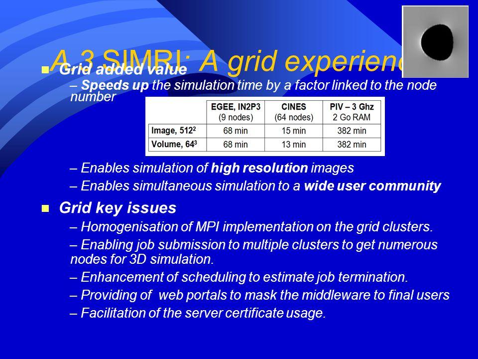 A.3 SIMRI: A grid experience