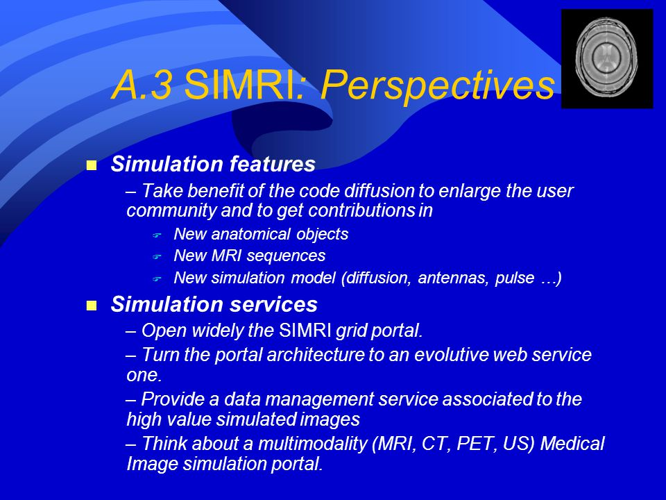 A.3 SIMRI: Perspectives Simulation features Simulation services