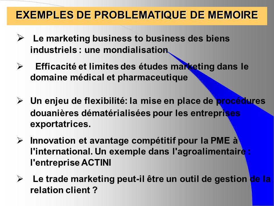 EXEMPLES DE PROBLEMATIQUE DE MEMOIRE