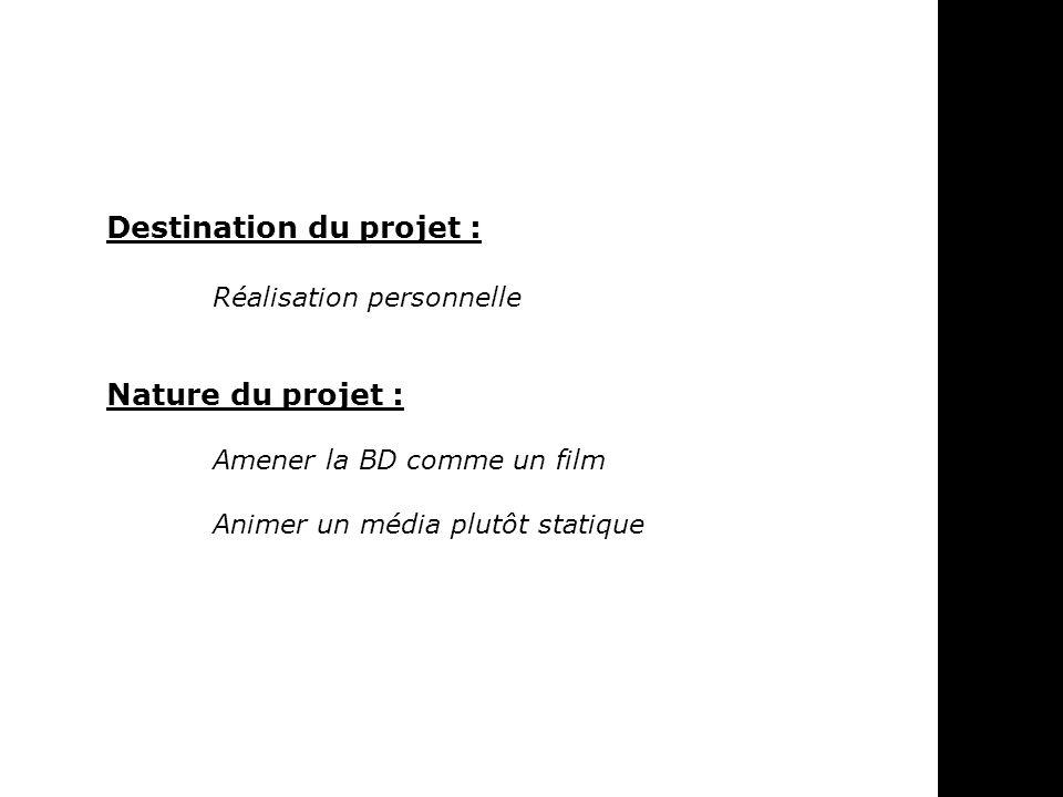 Destination du projet :