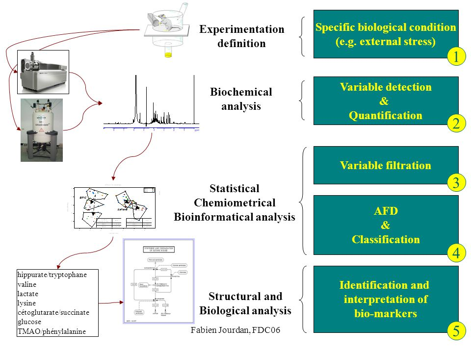 Specific biological condition Bioinformatical analysis