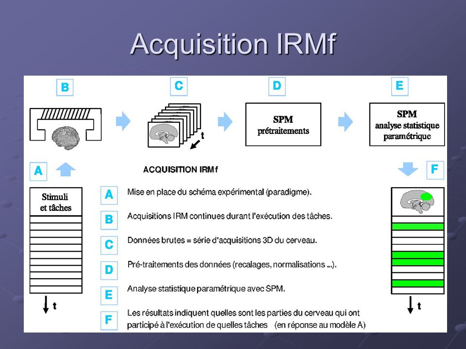Acquisition IRMf