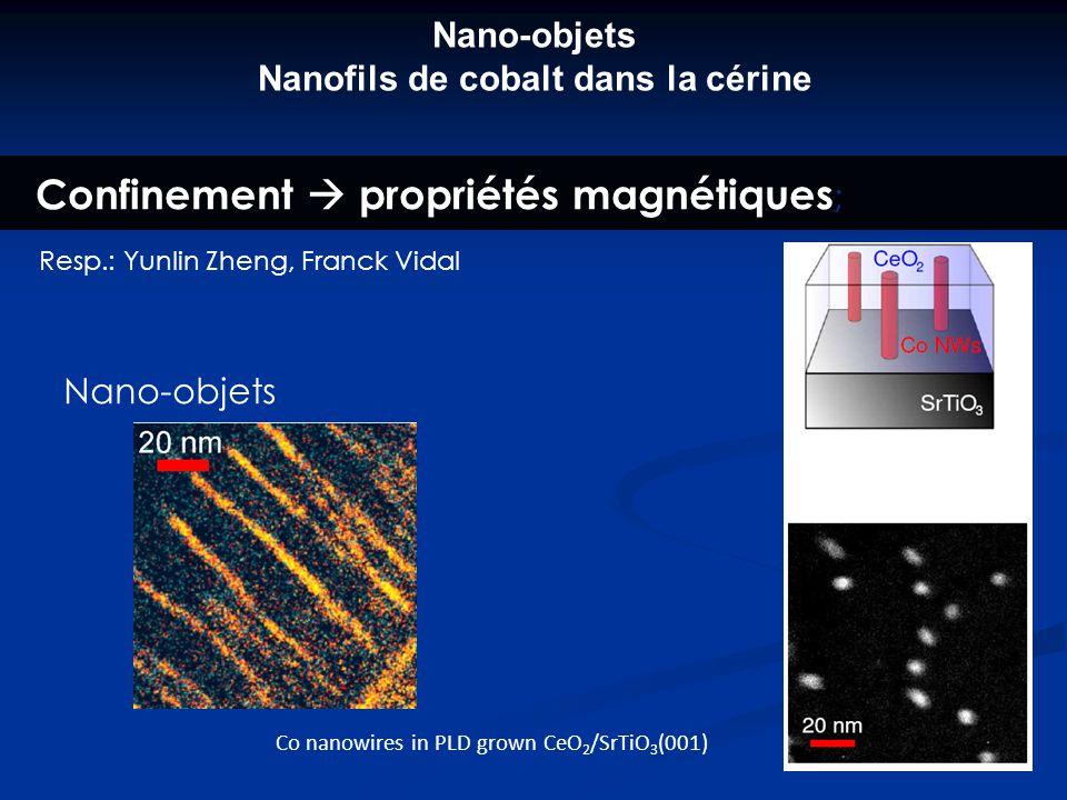 Nano-objets Nanofils de cobalt dans la cérine