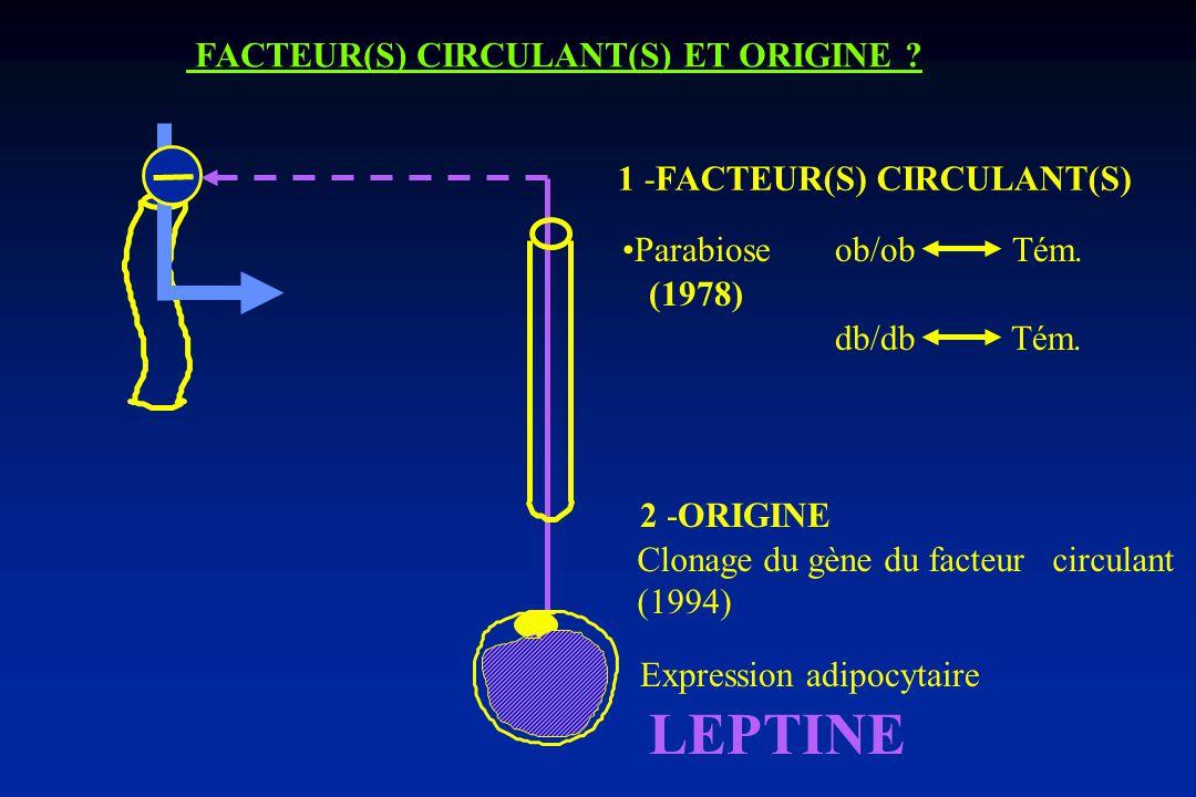 LEPTINE FACTEUR(S) CIRCULANT(S) ET ORIGINE