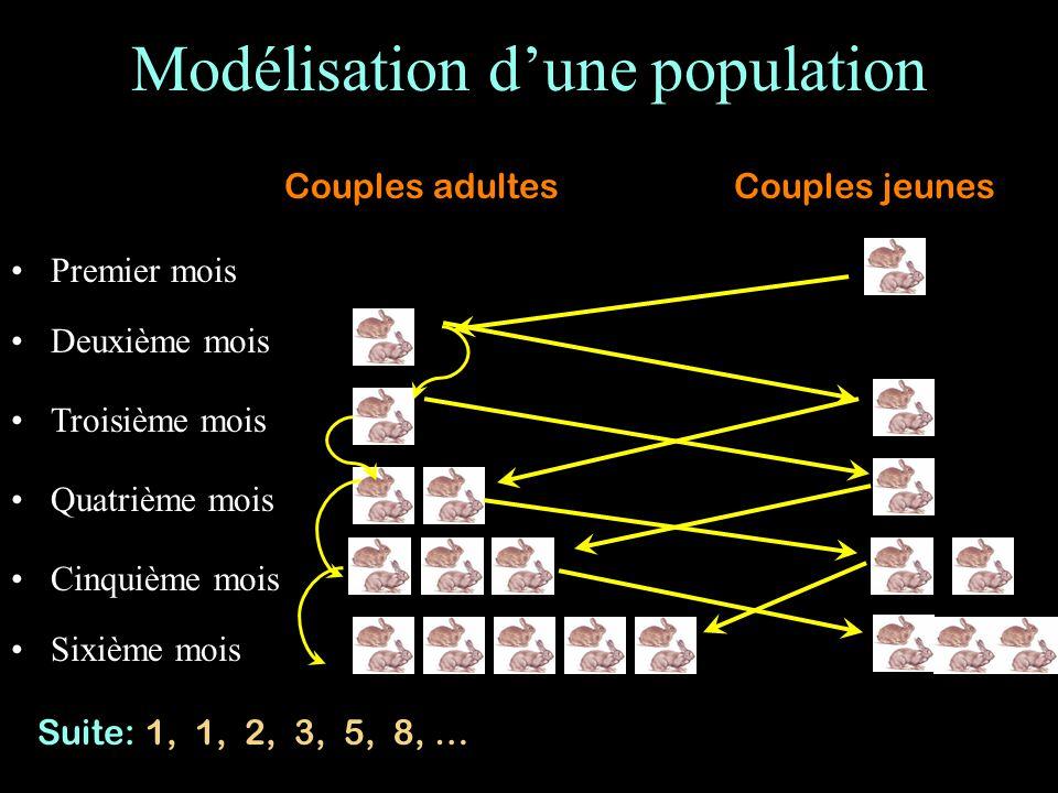 Modélisation d'une population