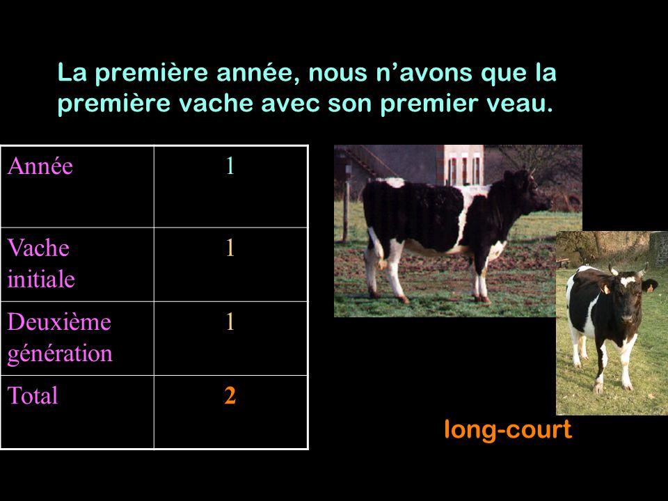 La première année, nous n'avons que la première vache avec son premier veau.