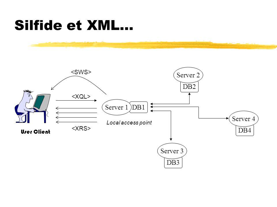 Silfide et XML… Server 2 DB2 Server 1 DB1 Server 4 DB4 Server 3 DB3