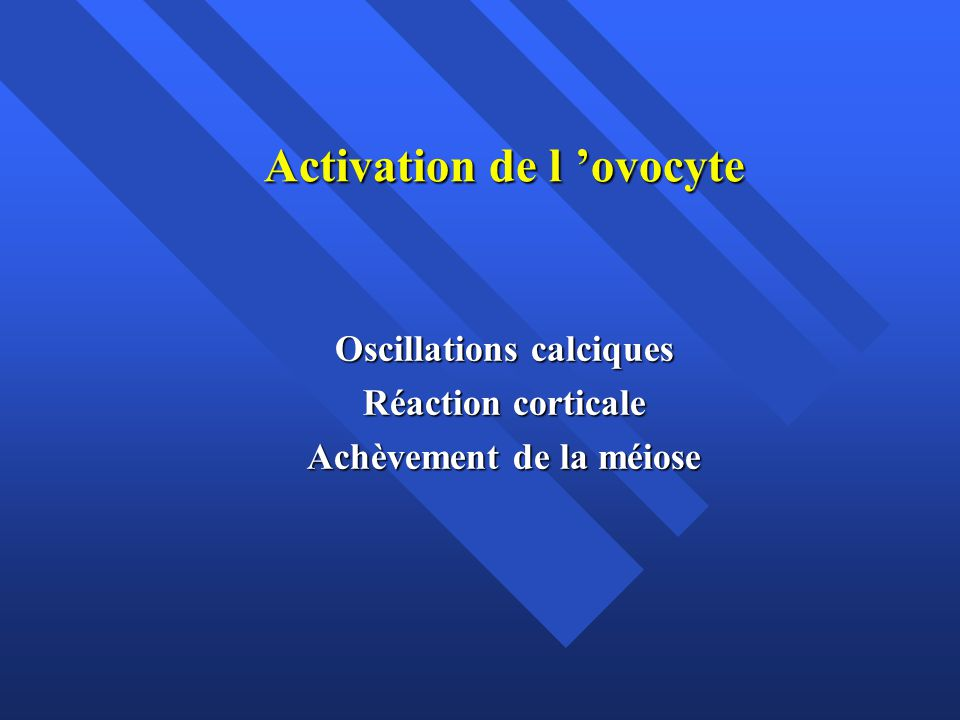 Activation de l 'ovocyte
