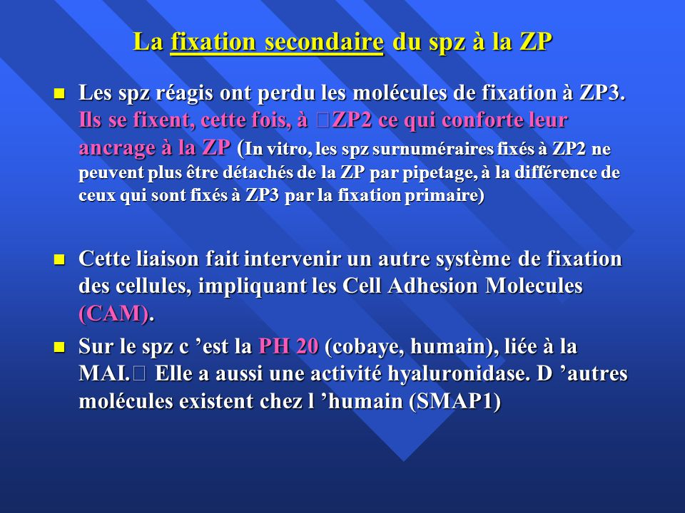 La fixation secondaire du spz à la ZP