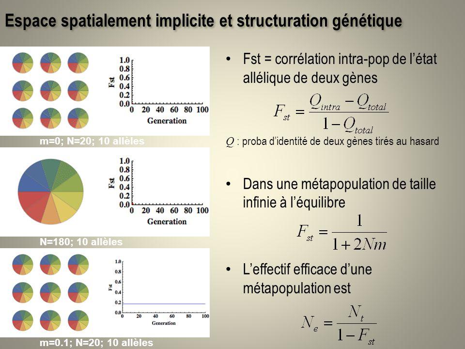 Espace spatialement implicite et structuration génétique