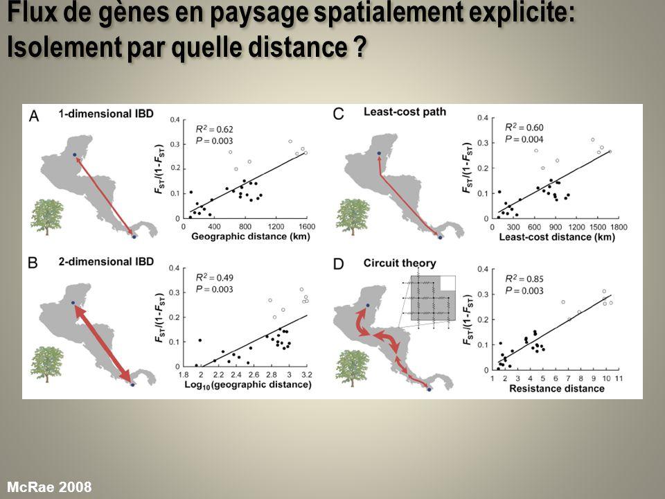 Flux de gènes en paysage spatialement explicite: Isolement par quelle distance