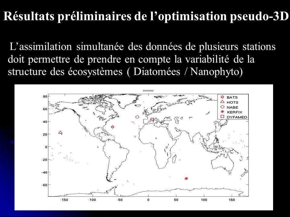 Résultats préliminaires de l'optimisation pseudo-3D