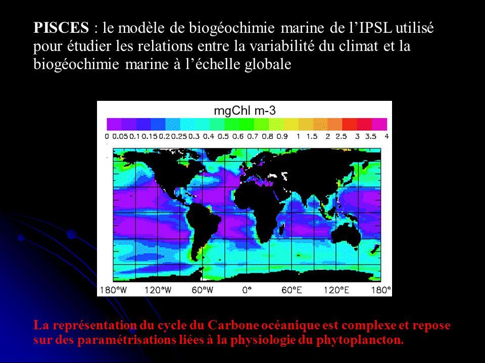 PISCES : le modèle de biogéochimie marine de l'IPSL utilisé pour étudier les relations entre la variabilité du climat et la biogéochimie marine à l'échelle globale