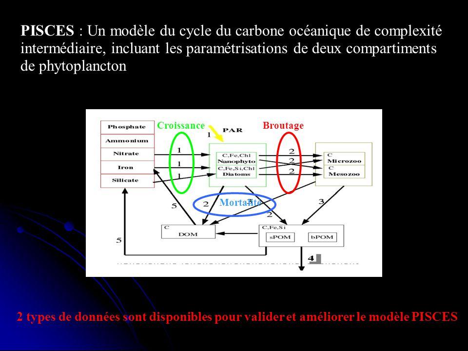 PISCES : Un modèle du cycle du carbone océanique de complexité intermédiaire, incluant les paramétrisations de deux compartiments de phytoplancton