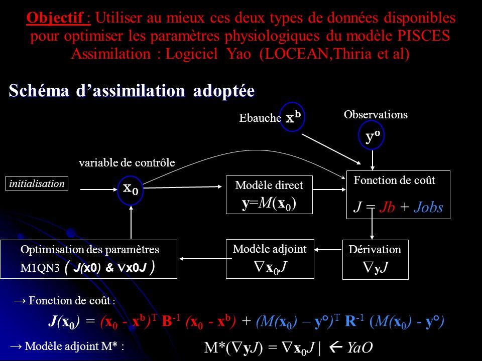 Schéma d'assimilation adoptée