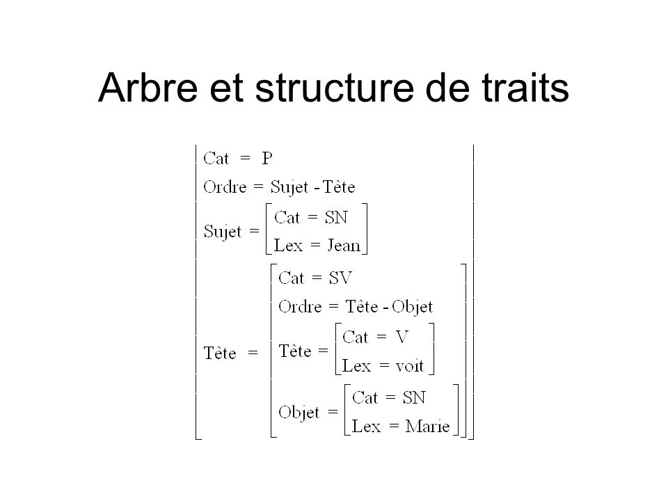 Arbre et structure de traits