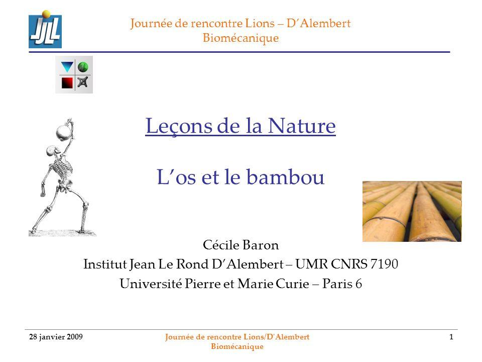 Leçons de la Nature L'os et le bambou