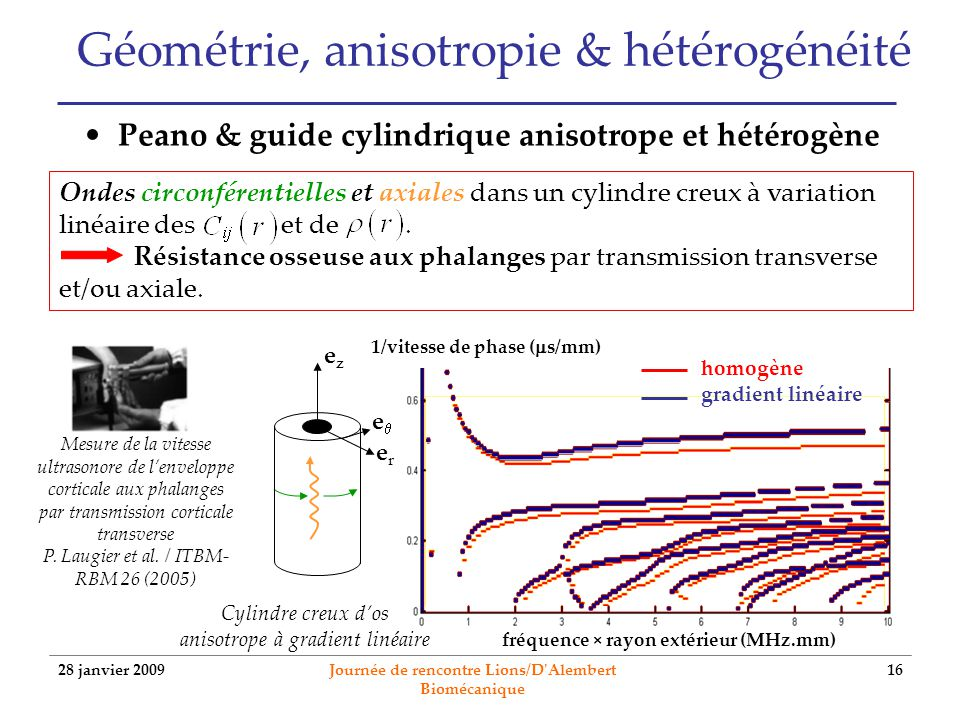 Géométrie, anisotropie & hétérogénéité