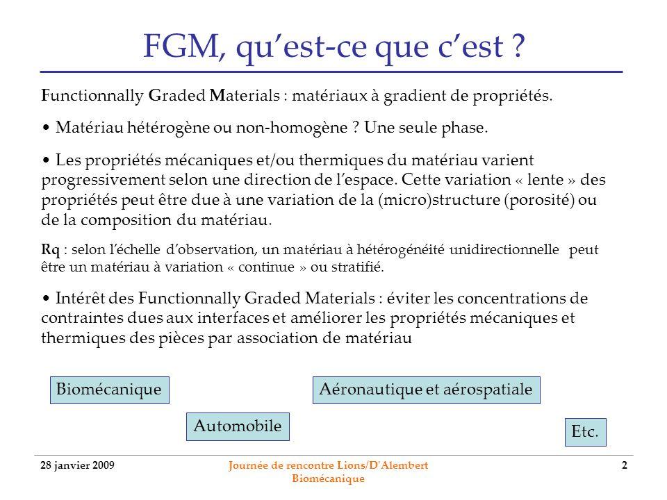 FGM, qu'est-ce que c'est
