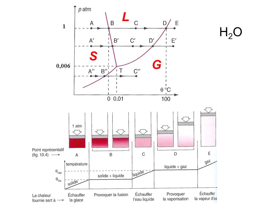 L 1 H2O S G 0,006