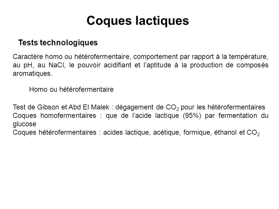 Coques lactiques Tests technologiques