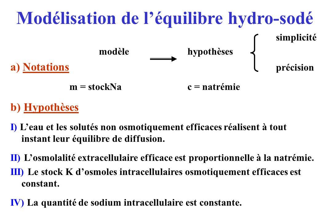 Modélisation de l'équilibre hydro-sodé