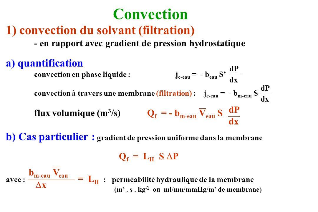 Convection 1) convection du solvant (filtration) a) quantification