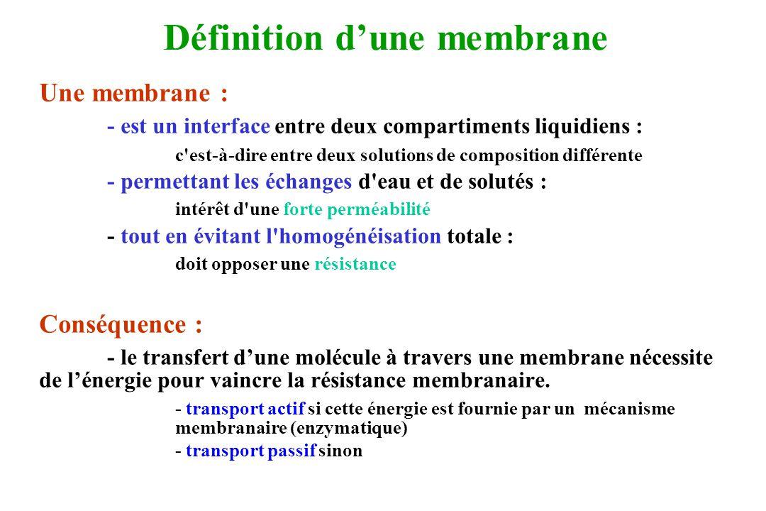 Définition d'une membrane