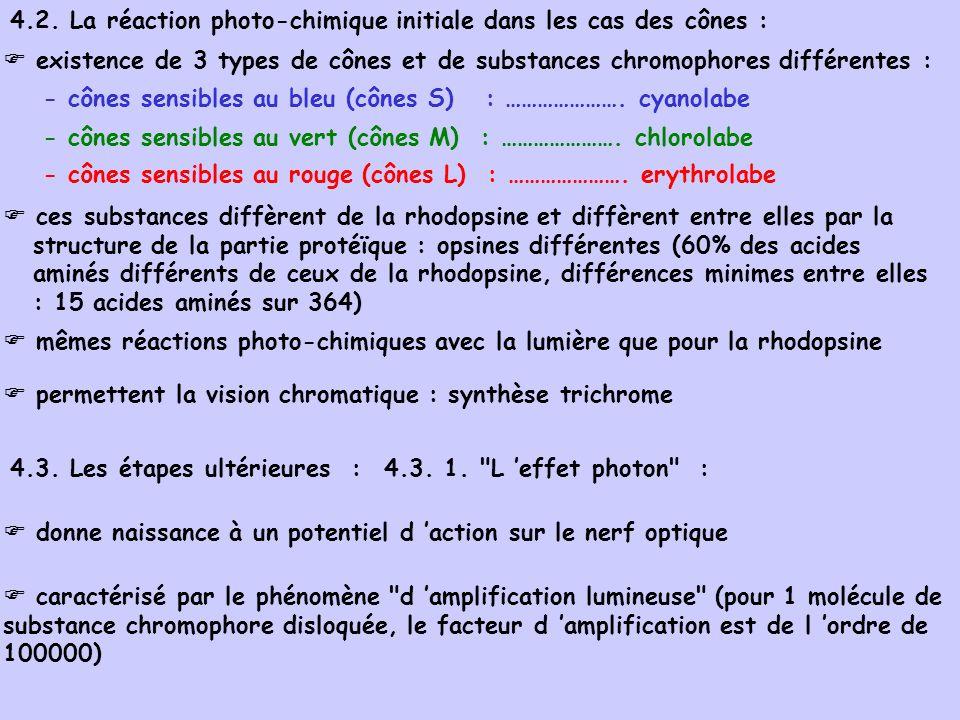 4.2. La réaction photo-chimique initiale dans les cas des cônes :