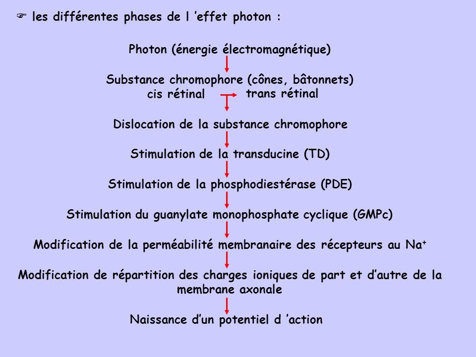 les différentes phases de l 'effet photon :